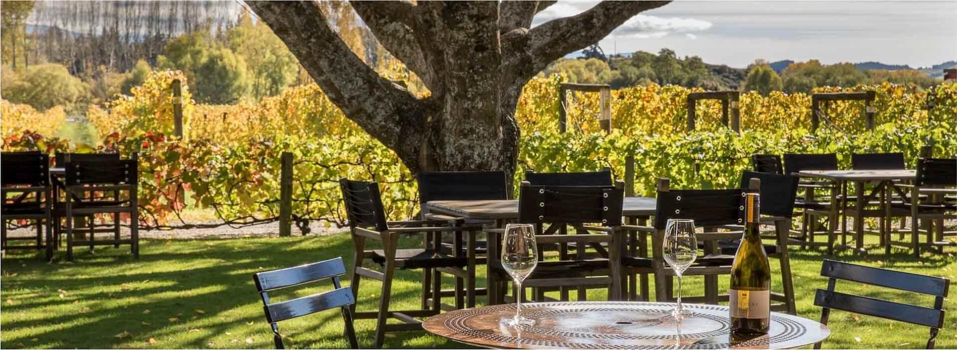 Neudorf: Eines der besten Weingüter Neuseelands